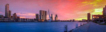 Skyline van Rotterdam met de Erasmusbrug en avondrood  RawBird Photo's Wouter Putter van Rawbird Photo's Wouter Putter