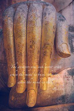De hand van Buddha van Misja Vermeulen