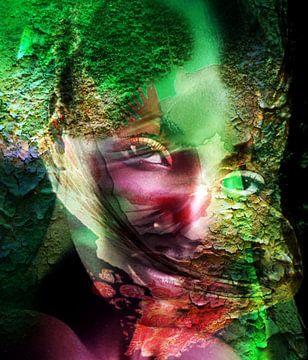 Das Portrait van Gertrud Scheffler