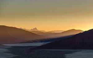 Woestijn ontwaakt van Peter Vruggink