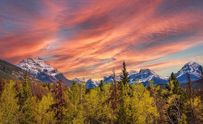 Bergtoppen van de Rocky Mountains, Canada van Rietje Bulthuis