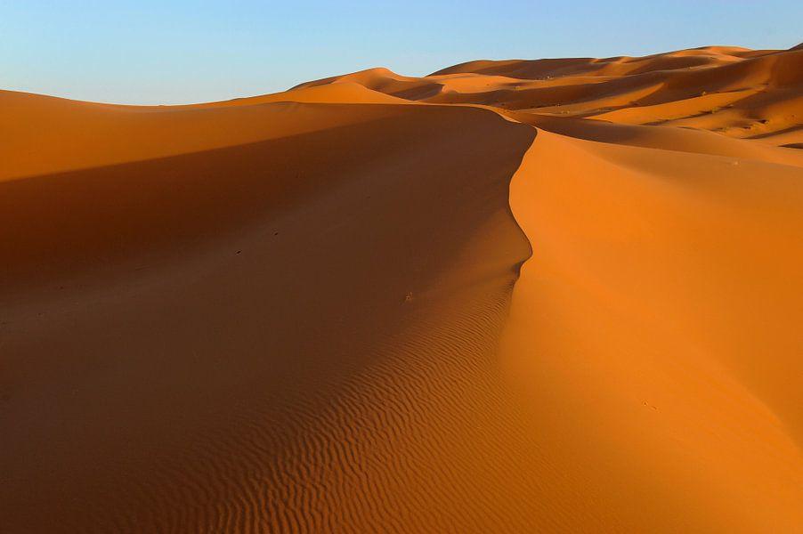 Goudgele zandduinen in de Erg Chebbi woestijn in het zuiden van Marokko