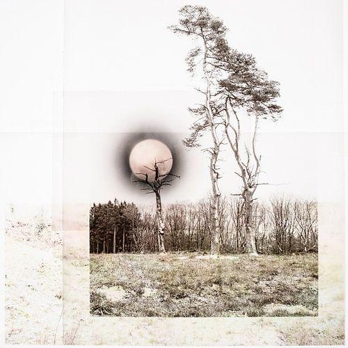 Midwinter maan (collage) van