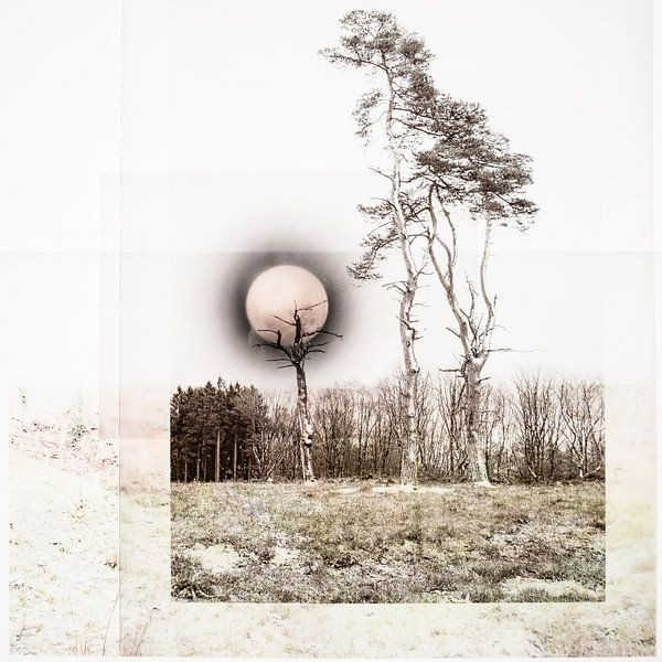 Midwinter maan (collage) van Niek van Schie