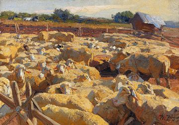 Schafe im Pferch, HEINRICH VON ZÜGEL, Um 1895-1898 von Atelier Liesjes