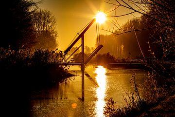Morning glory van Scholtes Fotografie