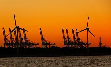 Zonsondergang Maasvlakte Rotterdam van Jessica Berendsen