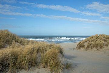 In de duinen bij het strand van Willeke Bijker