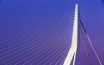 Le pont Erasmus à Rotterdam sur Joni Israeli