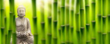 Boeddha in het bamboebos van Dörte Stiller