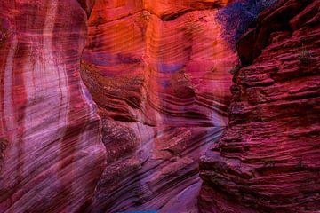 Utah Canyon van Theo van Woerden