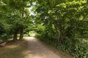 Jaagpad langs de Kromme Rijn bij Amelisweerd  van Marijke van Eijkeren