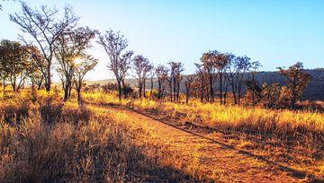 Zonsondergang in Zuid Afrika van Aad Clemens