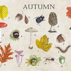 Autumn (herfst) van Jasper de Ruiter