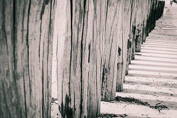 Fragment van houten paalhoofden van Fotografiecor .nl