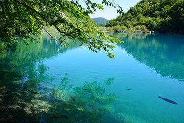 Turquoise water in de Plitvice Meren Kroatië van My Footprints