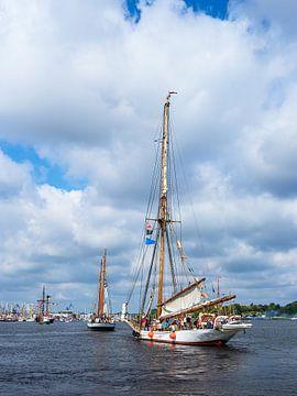 Zeilschepen bij de Hanse Sail in Rostock van Rico Ködder