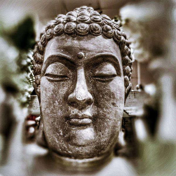 Buddha Stone in SW 07032021 von Michael Ladenthin