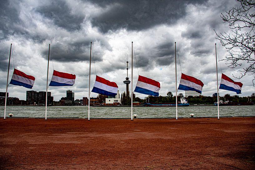SS Rotterdam van Truckpowerr