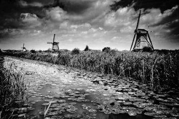 Molens in Kinderdijk sur