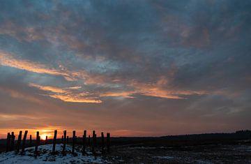 Grafheuvels op de Regte Heide in Goirle bij zonsopkomst. van Miranda Rijnen