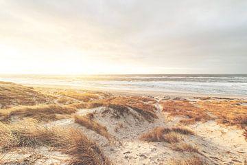Dänemarks goldene Nordseeküste von Florian Kunde