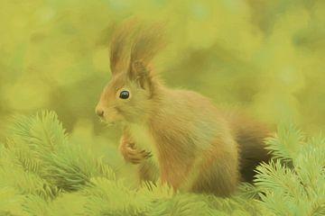 (CA006)  Eekhoorn van didier de borle