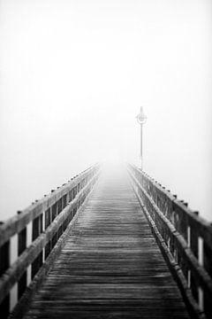 Bridge van Jana Behr