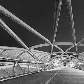 De Netkousbrug, De Groene verbinding te Rotterdam van Original Mostert Photography