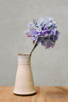 Vase mit blau-violetten Hortensien | Papierblumen | Stillleben | Fotografie von Mirjam Broekhof