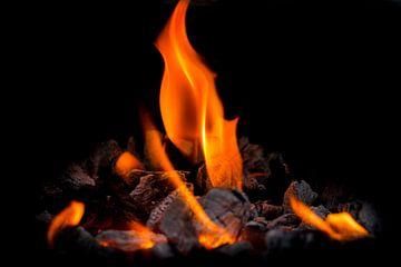 Vlam van