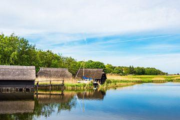 Bootshäuser auf dem Bodden auf dem Fischland-Darß in Prerow von Rico Ködder