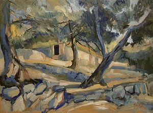 De stenen omheining in de olijfgaard van Nop Briex
