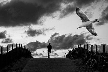 Vögel 4 von Hans Levendig (lev&dig fotografie)