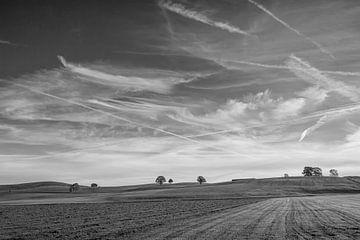 Weite Felder von Andreas Stach