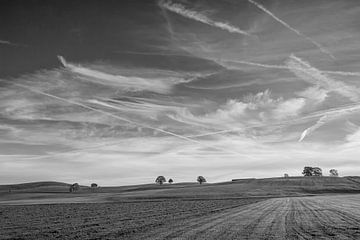 Wide open fields van Andreas Stach