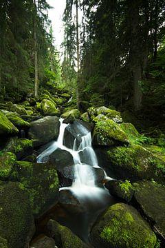 Triberg Wasserfalle #1, Schwarzwald, Deutschland von Gerhard Niezen Photography