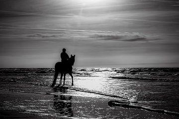 magisch licht op het strand van