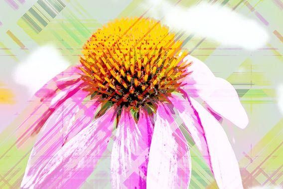 Echinacea abstrakt van Rosi Lorz