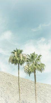 Palmen in der Wüste | Vintage Panorama von Melanie Viola