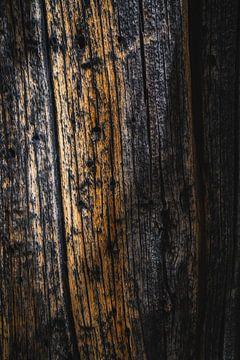De rimpels van de Bristlecone-den van Joris Pannemans - Loris Photography