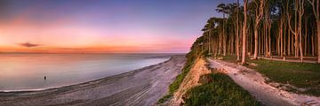 Steilküste mit Wald und Strand an der Ostsee in Mecklenburg Vorpommern von Voss Fine Art Photography