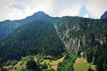 Landschap Zwitserland von Tiffany Venus
