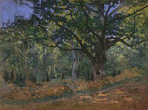 De Bodmer Eik, het bos van Fontainebleau, Claude Monet van Meesterlijcke Meesters
