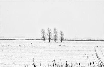Winters Assendelft van Iwan Goulooze