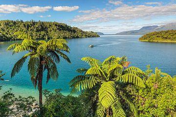 Droomvakantie in Nieuw-Zeeland van Markus Lange