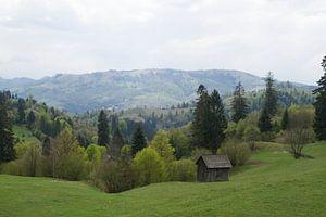 Voorjaar in Maramures, Roemenië
