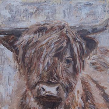 Portret van Schotse Hooglander, kleur van Mieke Daenen
