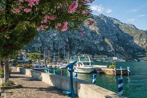 GARDASEE Hafen & Uferpromenade in Limone sul Garda