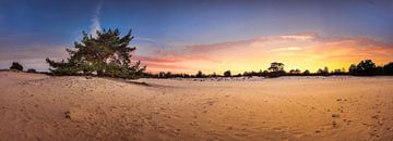 Panorama Aekingerzand van John Leeninga